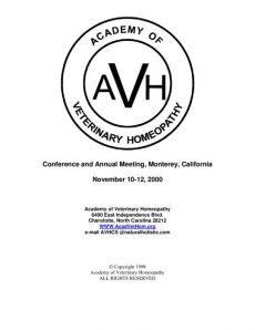 thumbnail of 2000AVHProceedings