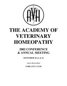 thumbnail of 2002AVHProceedings