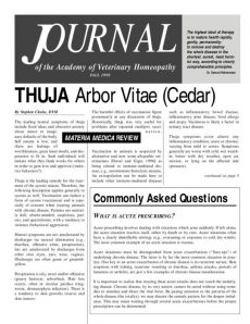 thumbnail of AVHFall1998