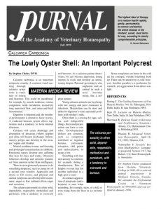 thumbnail of AVHFall1999