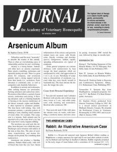 thumbnail of AVHSummer1999