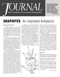 thumbnail of AVHWinter2001