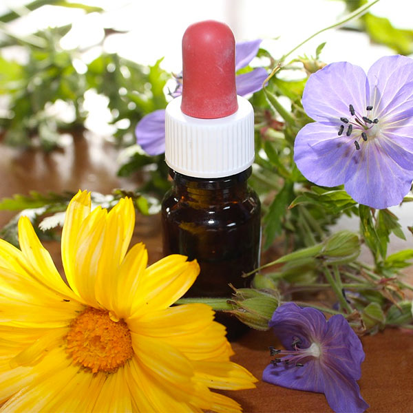 What Is Homeopathy The Academy Of Veterinary Homeopathy